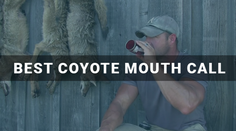 Best Coyote Mouth Call