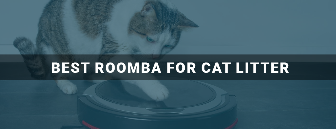 Best Roomba for Cat Litter